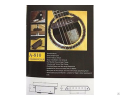 Soundhole Pickup A 810