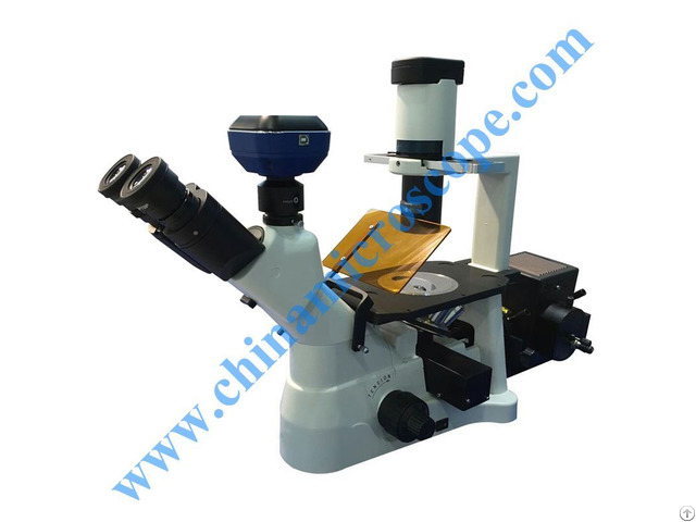 Xsd 3bf Inverted Fluorescent Microscope