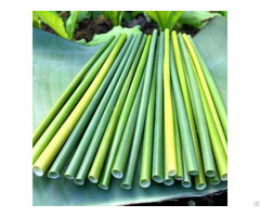 Grass Straw Compostable Drinking Straws