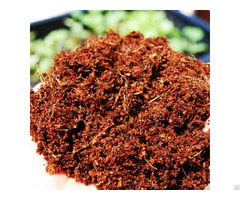 Coco Peat For Planting