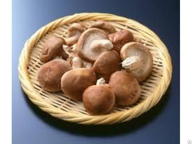 Dried Shiitake Mushrom
