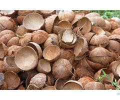 Coconut Shell Raw