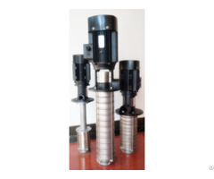 Qly Vertical Stainless Steel Submerged Multistage Centrifugal Pump