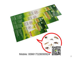 China Bug Insect Killer Stickers Patch Pest Catcher Trap Card