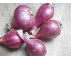 Natural Fresh Non Peeled Red Onion Export