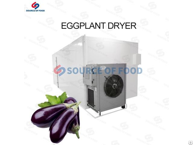 Eggplant Dryer