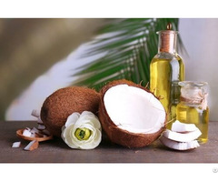 Virgin Coconut Oil Vietnam
