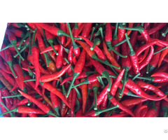 Natural Red Chilli Best Price