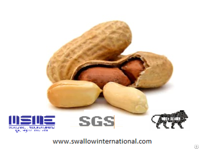 Peanut Kernal