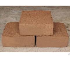 Coco Peat For Plant