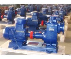 Cyz Self Priming Oil Transfer Pump