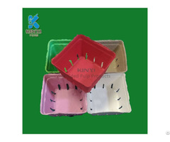 Colorful Paper Pulp Mold Fruit Packaging Box