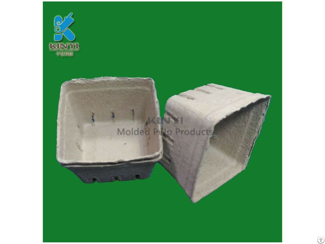 Customized Paper Pulp Mold Fruit Packaging Tray Container