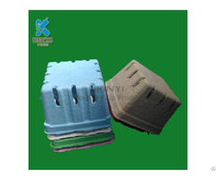 Biodegradable Fruit Packaging Box Container Paper Pulp Molded