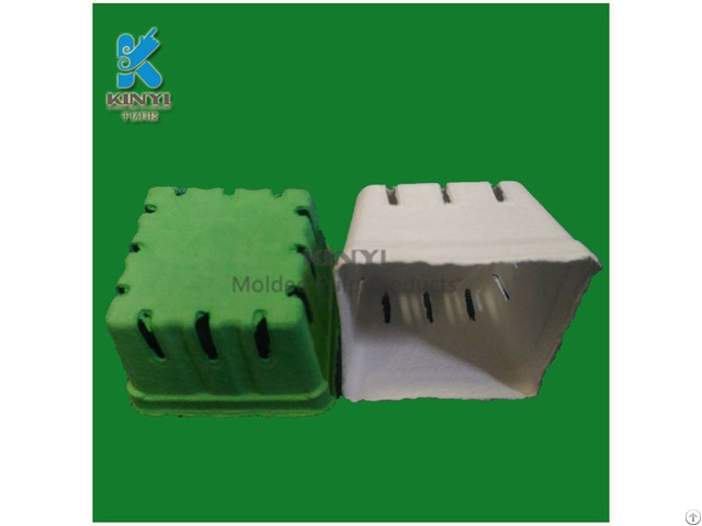 Environmental Paper Pulp Molded Fruit Packaging Tray
