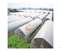 Agricultural Single Span Plastic Film Greenhouse