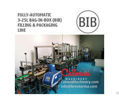 Fill N Pack Complete Bag In Box Line For 3 5 10 20l Bib Filling And Packaging