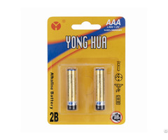 High Power Durable And Long Lasting 1 5v Lr03 Aaa Alkaline Battery