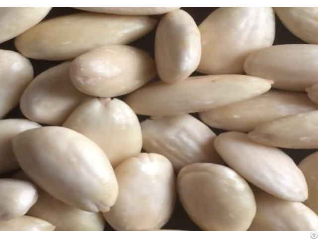 Blanched Almond Kernels