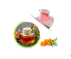Hot Sale Supply Nature 100% Seabuckthorn Seed Oil