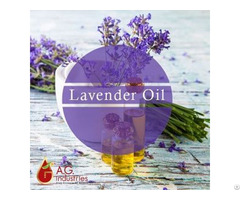 Leading Lavender Oil Manufacturer