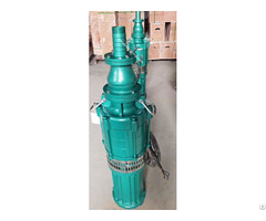 Submersible Pump With Water Filled Motor