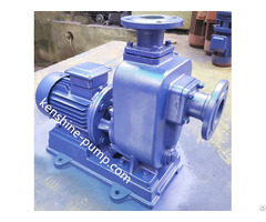 Zwl Self Priming Sewage Pump Directly Coupled Connection