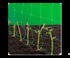 Plant Support Climbing Trellis Net
