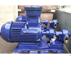 2cy Gear Oil Transfer Pump