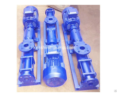 G Helical Rotor Pump