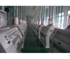300t 24h Floor Type Wheat Flour Production Line