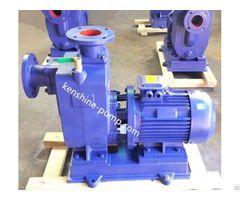 Zwl Self Priming Wastewater Treatment Pump