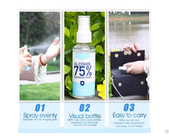 Hand Sanitizer Spray Type