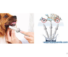 Why Need Home Dental Cleaning For Your Dogs