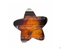 Custom Make Security 3d Hologram Sticker Label