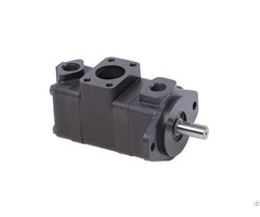 V10 20 Series Vane Pump