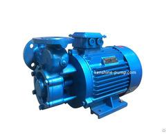 W Single Stage Vortex Pump