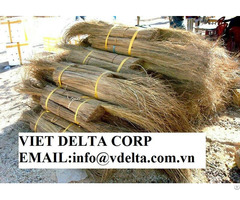 Palm Leaf Broomstick