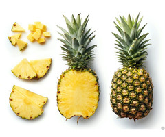 Pineapple For Sale