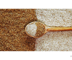 Brown Rice For Sale