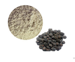 Griffonia Seed Extract