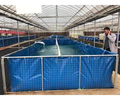 Pvc Tarpaulin Breeding Pool