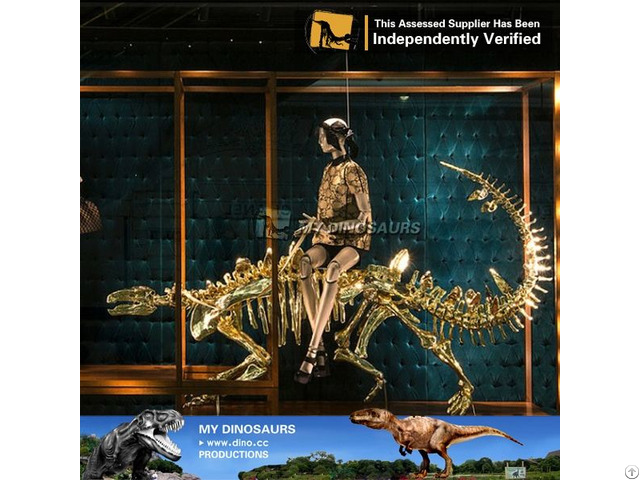 My Dino Dinosaur Skeleton Fossil Mechanical For Exhibition