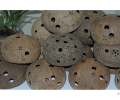 Best Quality Coconut Shell Flower Pot