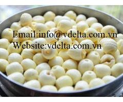 High Quality Lotus Nut Viet Nam