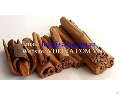 Cinnamom From Vietnam