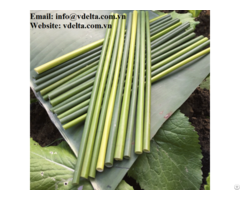 Eco Grass Straws Viet Nam