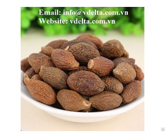 High Quality Malva Nuts From Viet Nam