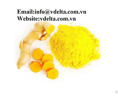 High Quality Turmeric Powder Vdelta