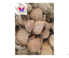 Coconut Shell Raw From Viet Nam
